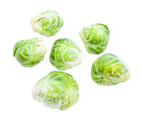 several fresh brussels sprouts isolated on white