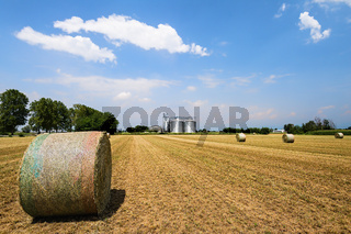 Hay bales in the field, on the background agricultural silos.