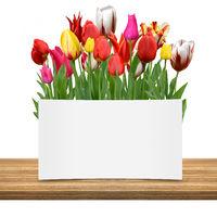 Blumen 1047