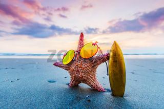 Starfish surfer on beach