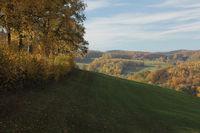 Odenwaldlandschaft bei Kreidach