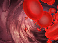 blood particles in the artery