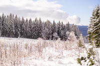 A wonderful winter landscape in beautiful Bavaria