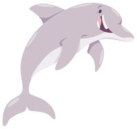 cartoon dolphin animal character