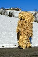 Wüeschter Silvesterklaus in einem Kostüme aus Holzwolle, Urnäsch, Schweiz