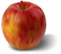 Ripe Apple Isolated on White