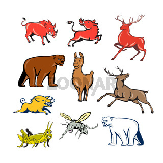 Wildlife Animals Cartoon Set
