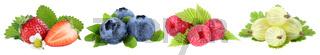 Sammlung Beeren Erdbeeren Blaubeeren Himbeeren Früchte in einer Reihe isoliert Freisteller freigestellt