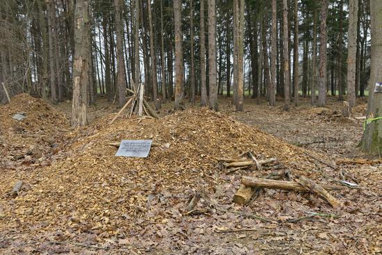 Überreste... Hambacher Forst *Nordrhein-Westfalen*