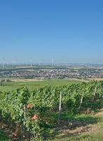D--Gau-Bickelheim.jpg