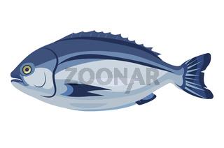 Dorado fish icon isolated on white background, healthy fresh product, mediterranean cuisine, vector illustration.