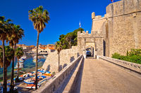Dubrovnik old town Ploce gate entrance view