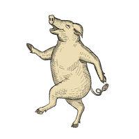 Jolly Pig Dancing Drawing Retro Color