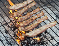 Bacon grilling on a Fire