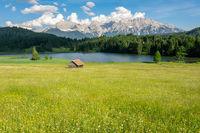 Alpine Lake and flowering meadow in Bavaria