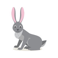 Cute gray rabbit hare isolated on white background