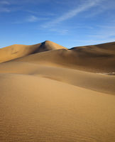 The soft curves of yellow sand dunes