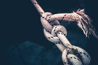 Close up of a tied rope knot