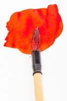 red colored tip of paintbrush in red blot close up