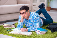 Young student preparing for exams at home