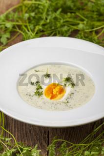 frischen Kerbelsuppe in einem Suppenteller auf Holz