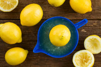 Lemon on Lemon Squeezer