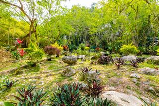 botanical garden Eloy Valenzuela Floridablanca