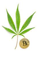 Green cannabis leaf and bitcoin coin.