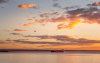 Cargo ships in Botany Bay at sunset