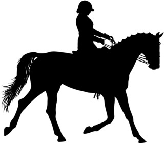 The black silhouette of horse and jockey
