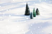 Synthetic fir trees on frosty snow with snow flakes