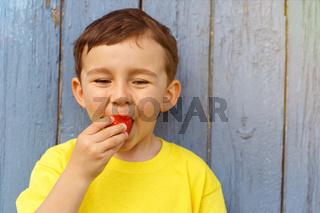 Kind kleiner Junge isst Erdbeere Sommer Erdbeeren essen Textfreiraum Copyspace draußen