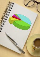 pie chart in notebook - business statistics