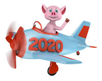 Piglet in airplane 2020