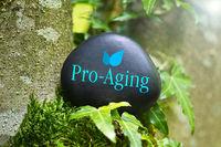 """Das Wort """"Pro-Aging"""" auf einem schwarzen Stein mit Efeu"""