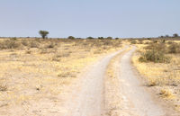 Sandy road in Botswana