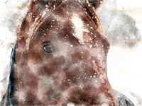 watercolor portrait of a brown horse in falling snow with face and eyes
