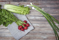 Healthy vegetables: radishes, celery and green onions.