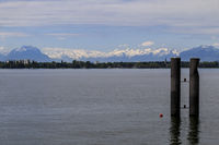 Lochau bei Bregenz, Blick zu den Schneegipfeln der Schweizer Alpen