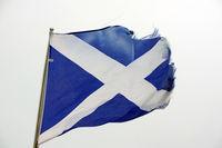 schottische flagge.jpg