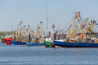 Prawn fishing boats in Dutch harbor Lauwersoog