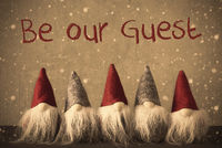 Gnomes, Snowflakes, Text Be Our Guest