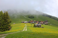 Green meadow and village Obermutten on a foggy summer day.