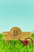 Bitcoin als Altersvorsorge Konzept