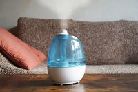 humidifier or air improver in living room