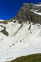 Alpinisten überqueren ein Schneefeld im Salentse Kar,Grand Muveran Massiv, Wallis, Schweiz