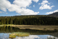 Landscape at the small Arbersee in Bavaria