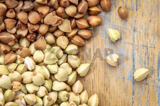 buckwheat groats and roasted kasha
