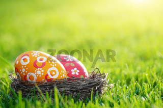 Easter eggs in the nest on green spring grass
