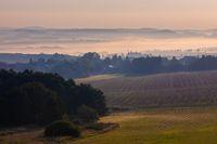 Autumn foggy sunrise landscape